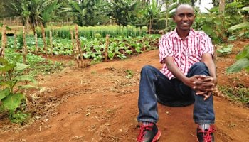 Fast Growing Small Scale Businesses in Kenya