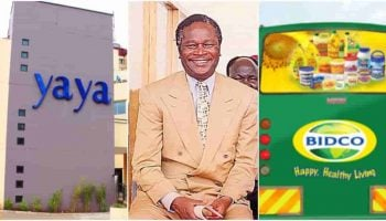 List of More than 35 Companies that Nicholas Biwott Owned in Kenya