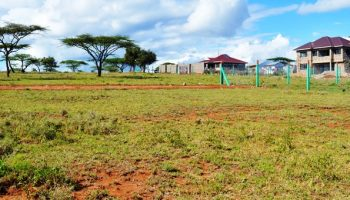 8 Places To Buy Land At The Cheapest Price In Kenya