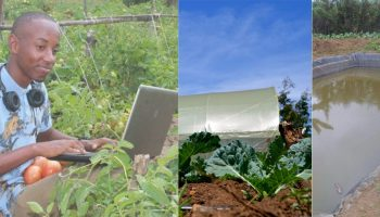 How Small Scale Farmers Can get Grants in Kenya