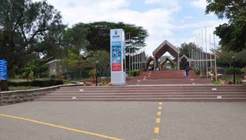List Of Courses Offered at Daystar University