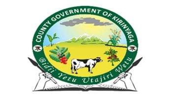 List Of Kirinyaga County Government Ministers (CECs) 2021