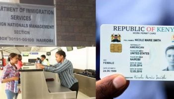 Kenya Immigration Work Permit Requirements