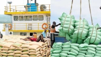 List of Licensed Sugar Importers in Kenya