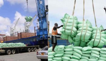 Sugar Importation Requirements in Kenya