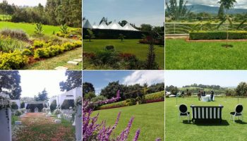 List Of Lush And Affordable Garden Venues For Weddings In And Around Nairobi