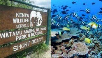 List Of Marine National Parks In Kenya