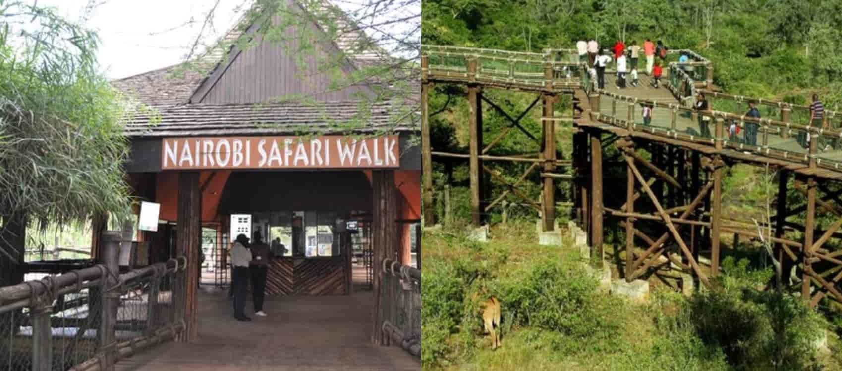 Image result for the nairobi safari walk