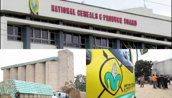 Functions Of The National Cereals And Produce Board (NCPB)