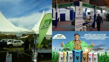 List Of Fertilizer Companies In Kenya