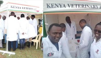 Functions Of Kenya Veterinary Board