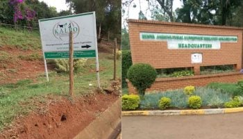 List Of Agricultural Research Institutes In Kenya