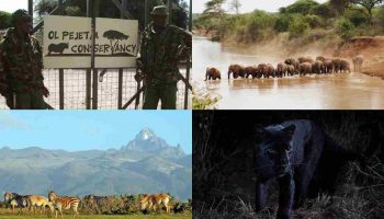 List Of 10 Best Places To Visit In Laikipia County