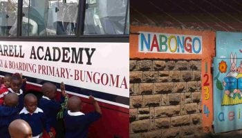 List Of Best Private Primary Schools In Bungoma County