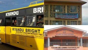 List Of Best Private Primary Schools In Machakos County