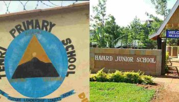 List Of Best Private Primary Schools In Embu County