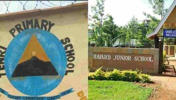 List Of Best Private Primary Schools In Embu County