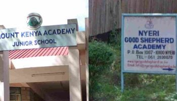 List Of Best Private Primary Schools In Nyeri County