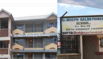 List Of Best Private Primary Schools In Nyandarua County