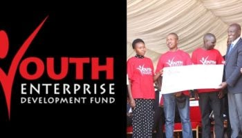 How To Apply For Constituency Based Loans From Youth Enterprise Fund