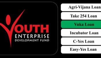 How To Apply For Vuka Loan From Youth Enterprise Fund