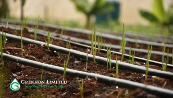List Of Best Irrigation Companies In Kenya