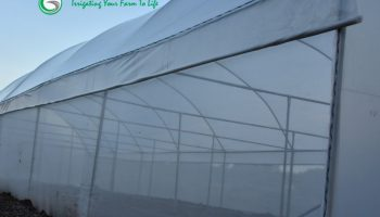 List Of Top Greenhouse Suppliers And Installers In Kenya