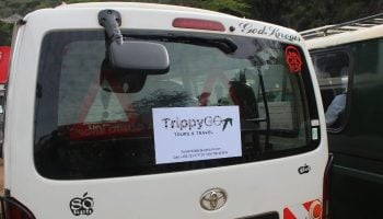 TrippyGO Tours Celebrates 3 Years In Business