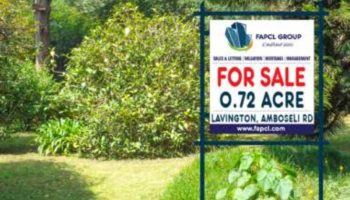 Important Factors To Consider When Buying Land In Kenya