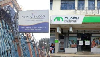 List of All Licensed SACCOs In Kenya 2020