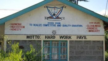 List Of Best Public Primary Schools In Nyandarua County