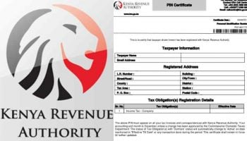 How To Apply For KRA PIN Online 2021