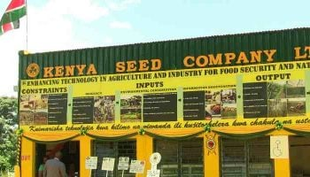 List Of Licensed Seed Companies In Kenya