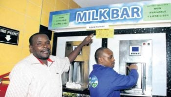 Requirements For Starting a Milk Bar in Kenya