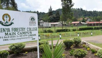 List Of Courses Offered At Kenya Forestry College