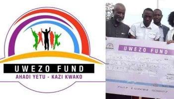 List Of Uwezo Fund Loan Products In Kenya