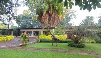 Kabete International School Fees Structure