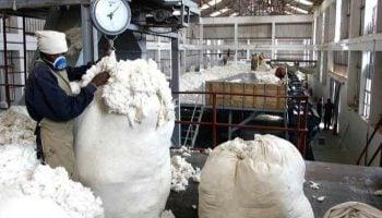 List Of Cotton Ginneries In Kenya
