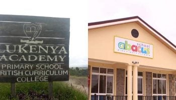 List Of International Schools In Machakos County