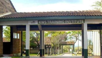 KWS Training Institute Courses and Fees Structure
