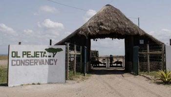 Ol Pejeta Conservancy Entry Fees