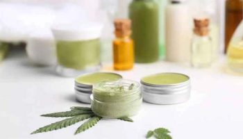 6 Popular CBD Products to Try Out