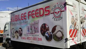 List Of Best Chicken Feeds Companies In Kenya