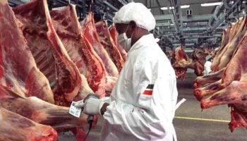 Requirements For Meat Export In Kenya